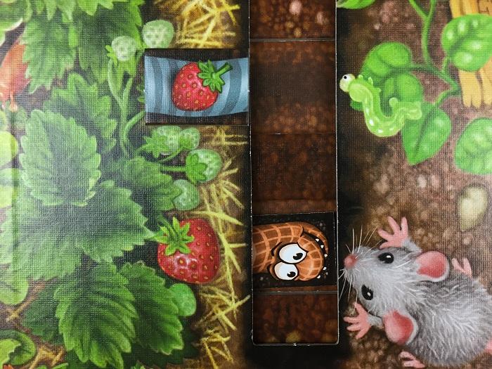 """Spieletipp: """"Da ist der Wurm drin"""" von Zoch, Erdbeere falsch platziert"""